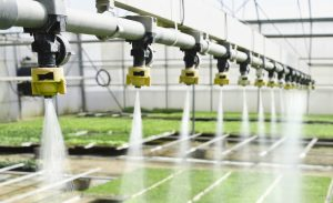 Monitor Agriculture and Horticulure Via UbiBot IoT Platform